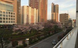 埼玉エリアのマンションでおすすめの安くて速いネットを比較紹介!