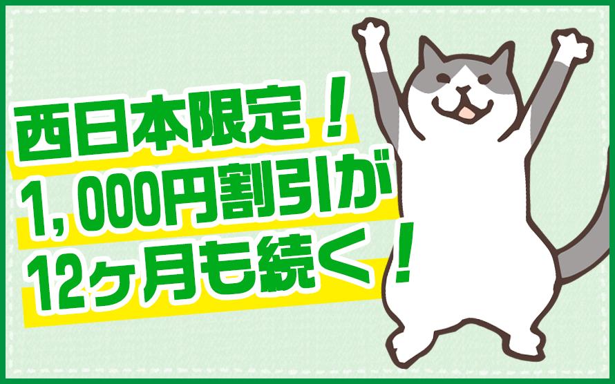 代理店ならソフトバンク光の西日本限定キャンペーンが使える!