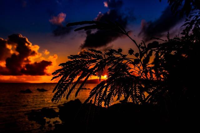 沖縄のインターネットは地元回線と光コラボどちらがおすすめ?
